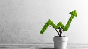 groen investeren; winst