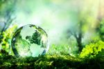 duurzaamheidseisen bedrijven bij steun
