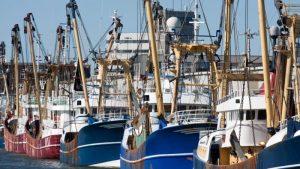 borgstellingskrediet visserij