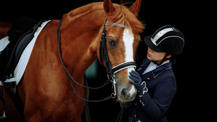Opbrengst paard geen ROW